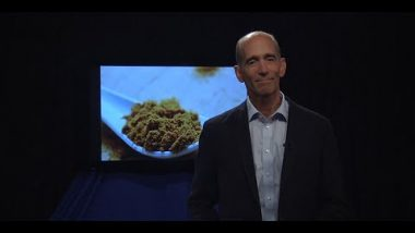 Dr. Mercola: The Wonders of Curcumin